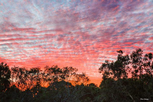 Sunset, Fort Pierce, FL