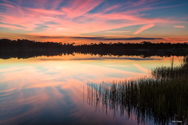 Sunset, George LeStrange Preserve,St. Lucie, FL