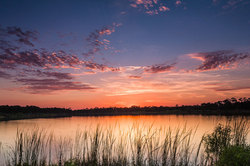 Sunset at George LeStrange Preserve, Florida