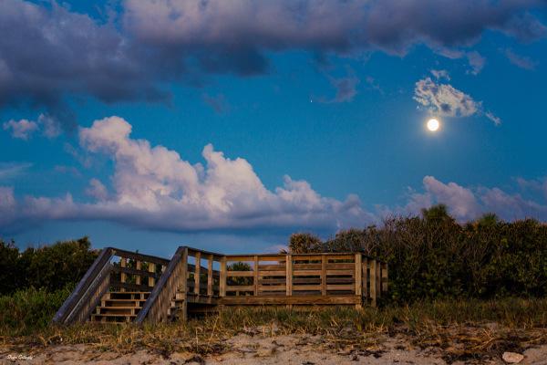 Convergence of moon and jupiter at dawn