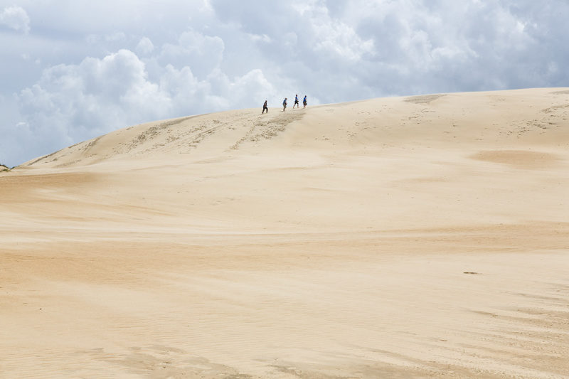 Sand dunes in the Outer Banks NC, Jockey