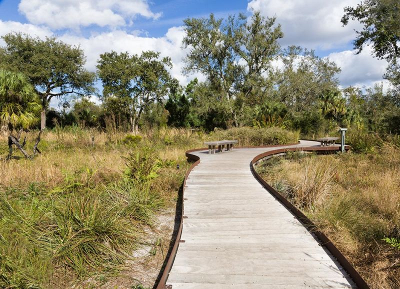 Wetland Boardwalk in the Wild Garden, Bok Gardens,