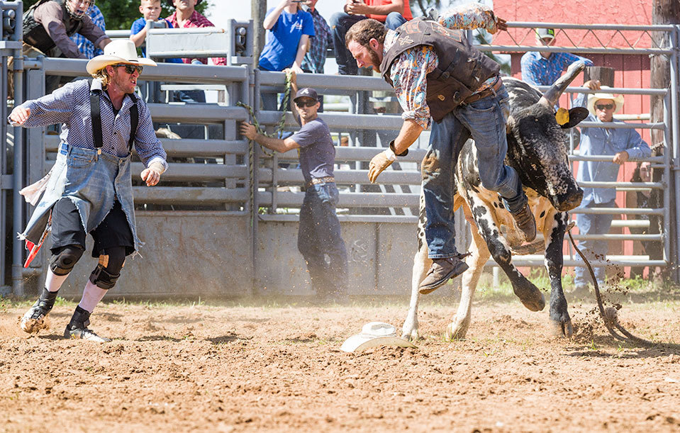 Bull rider is tossed on the horn of his bull, rode