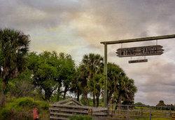 Cattle Ranch in Okeechobee, Florida
