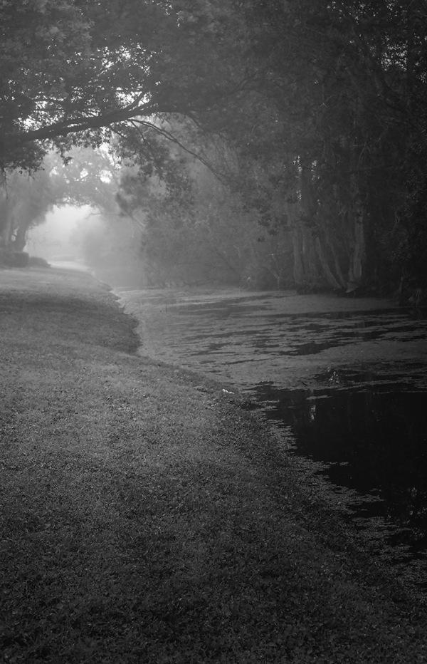 High Point Canal, fog,Ft Pierce, FL
