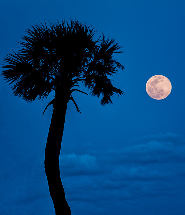 Supermoon, Florida