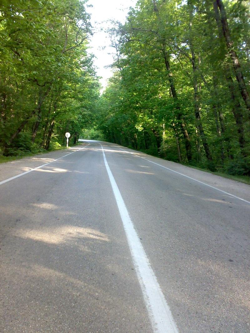 تونل سبز