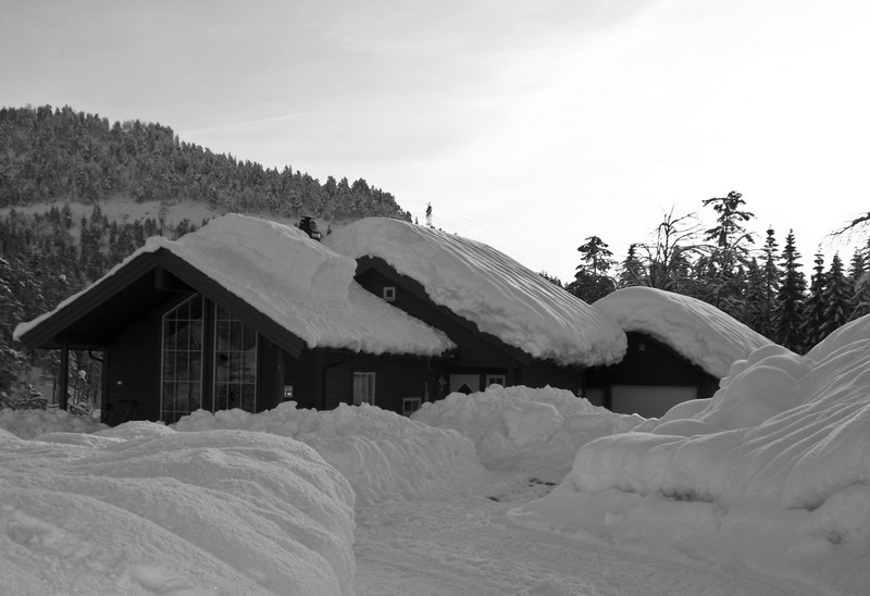 210 (Norge XXI)