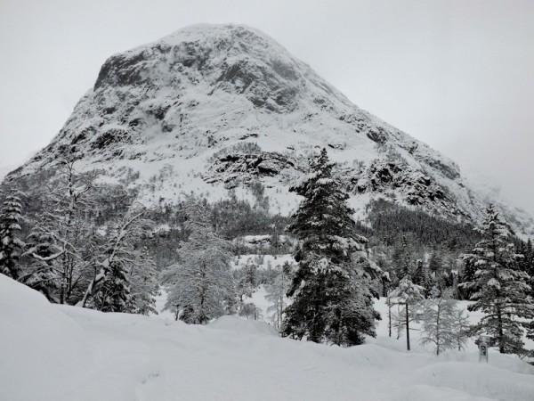 211 (Norge XXII)