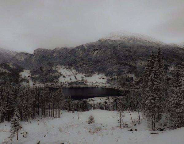 220 (Norge XXXI)