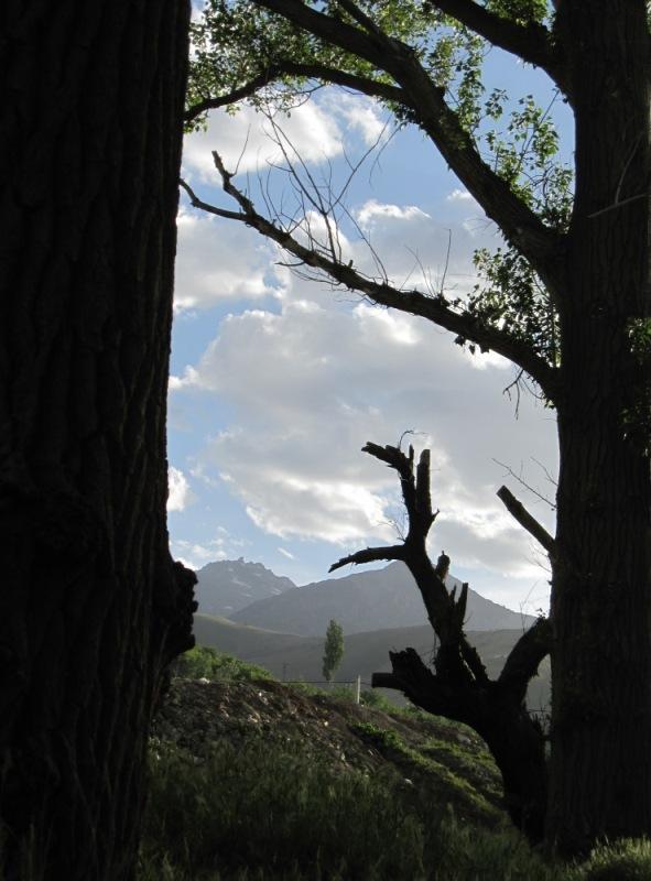 کوه الوند به فلک سر کشیده