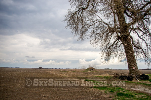 Storm Clouds, Cave, and Cottonwood Tree