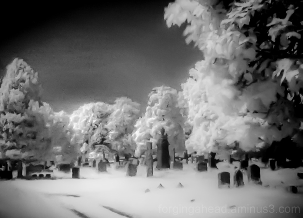 Cemetery in Infrared