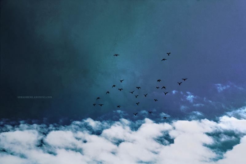 . . بالاتر از ابرها