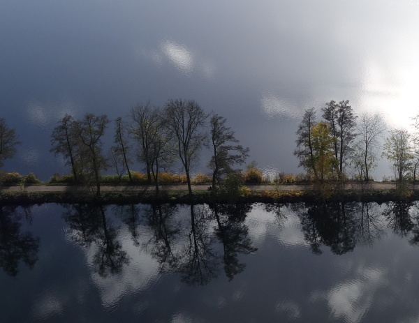 Trees reflecting in Hengsteysee