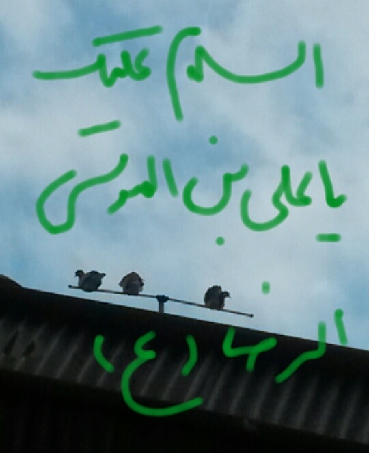 السلام علیک یا علی بن الموسی الرضا (ع)