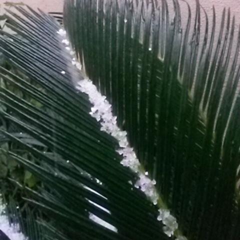Hail , corn snow