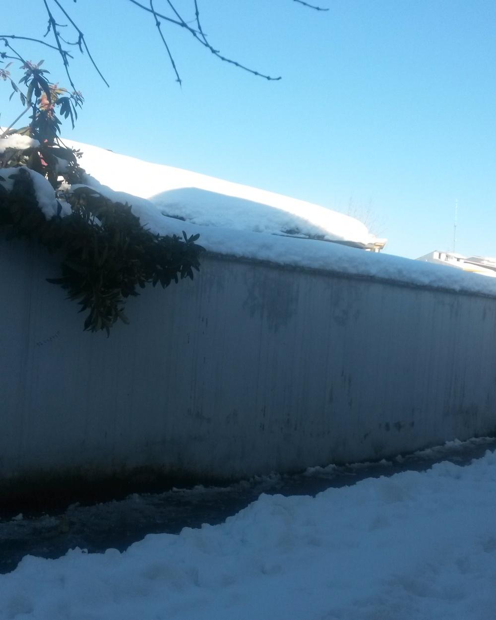 snow(winter)3