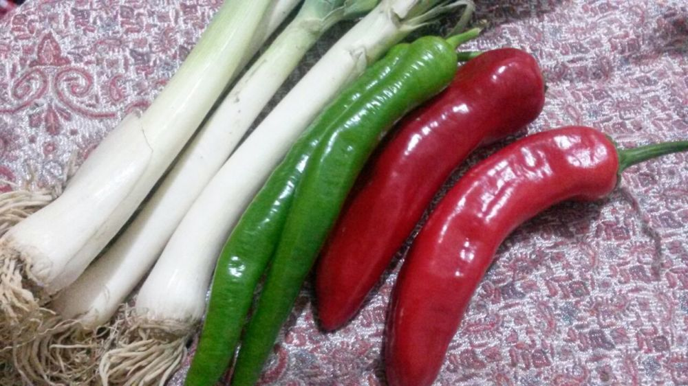 Sweet Peppers and Leeks