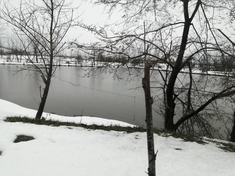 Snow 2020 (6)