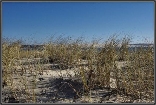 Le Cap Ferret et la dune du Pyla