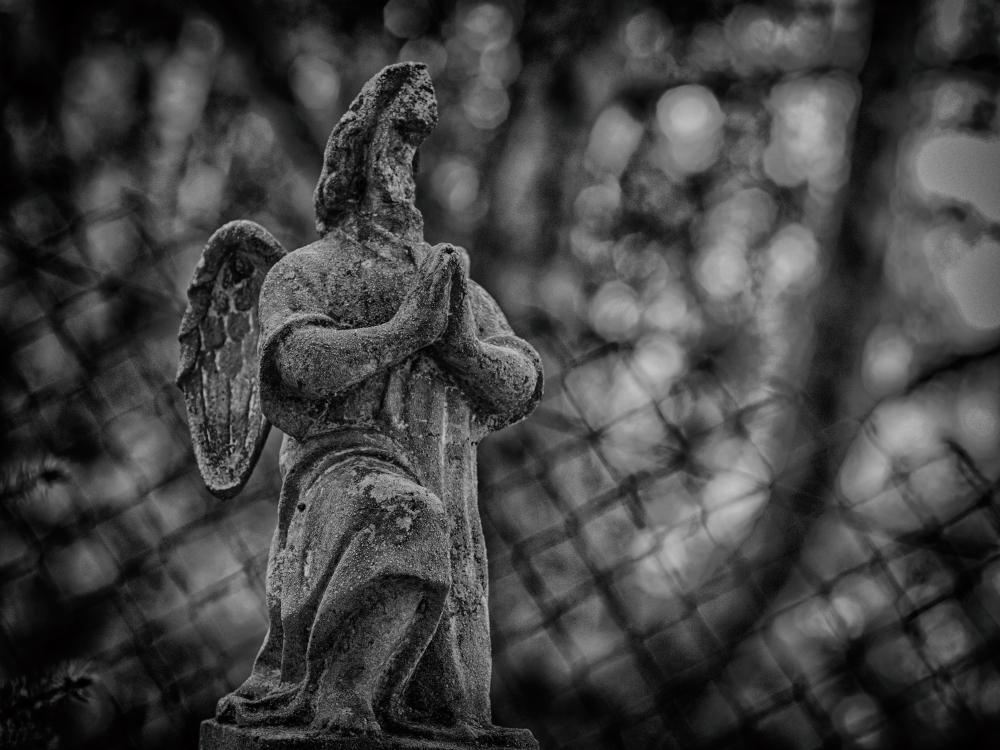 Half-angel
