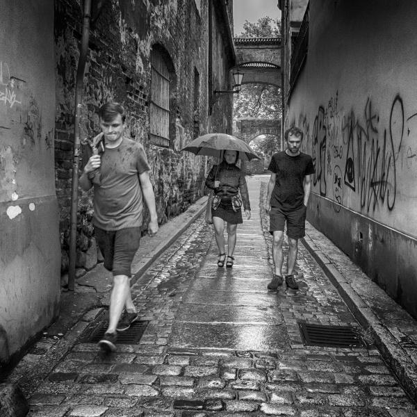 Rainy Lane