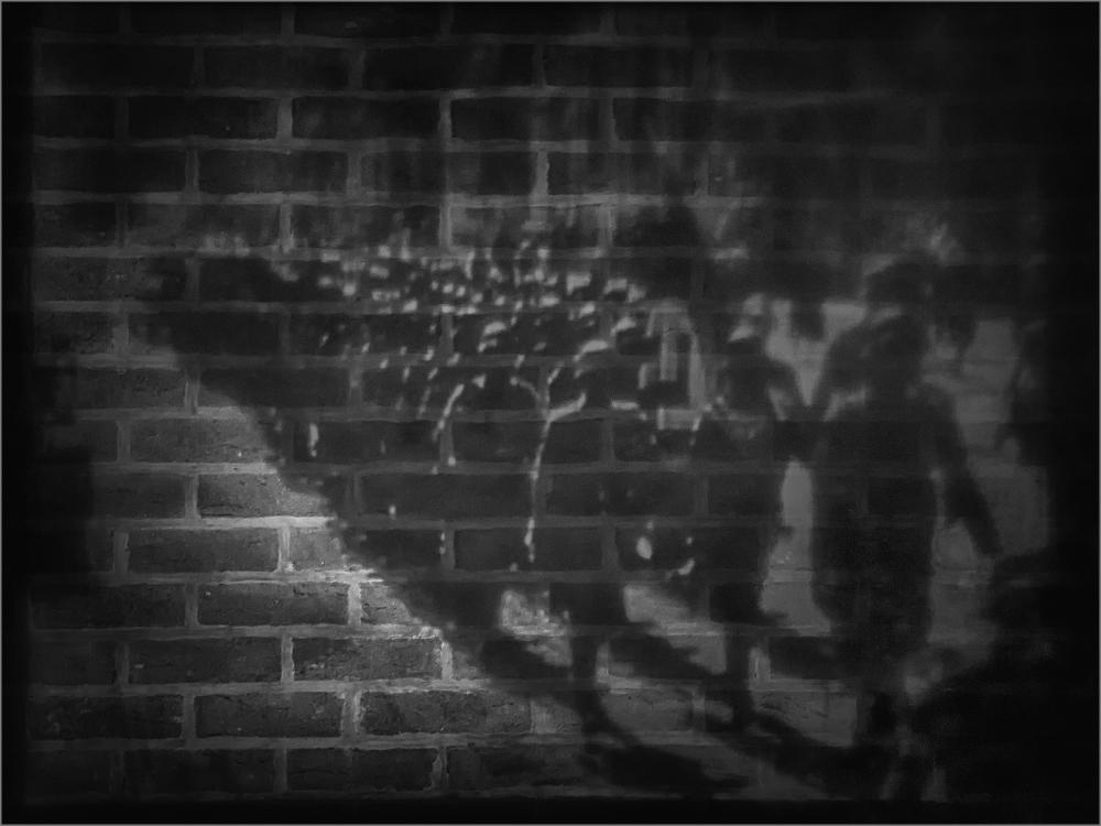 Shadows Of Great War