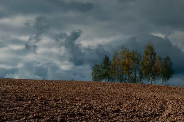 Autumn Melancholy