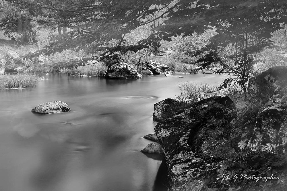 Brume sur la rivière ...