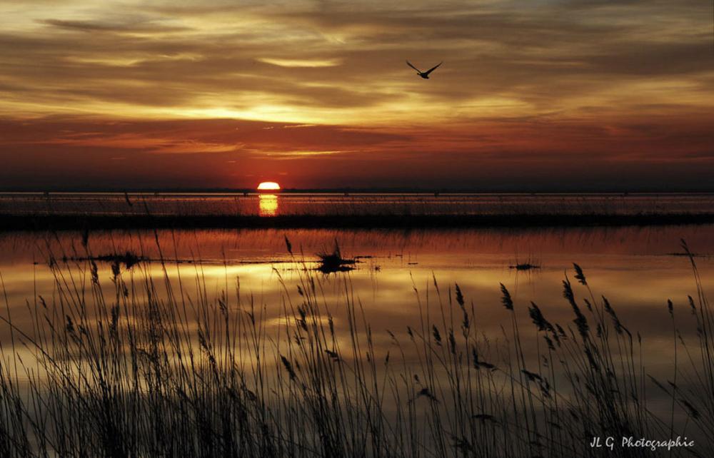 Coucher de soleil sur l'étang ...