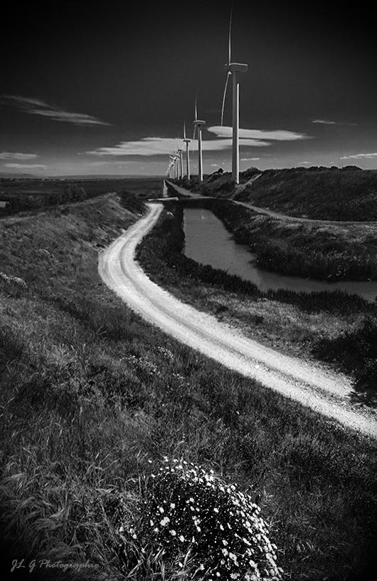 Le chemin des éoliennes ...