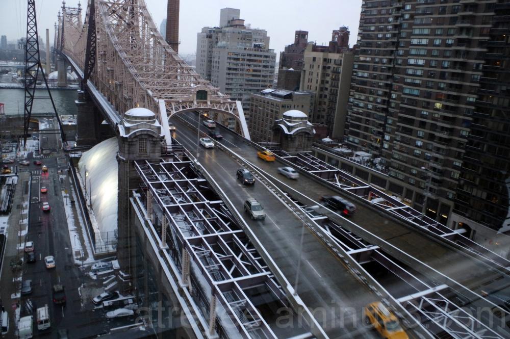 NYC roosevelt