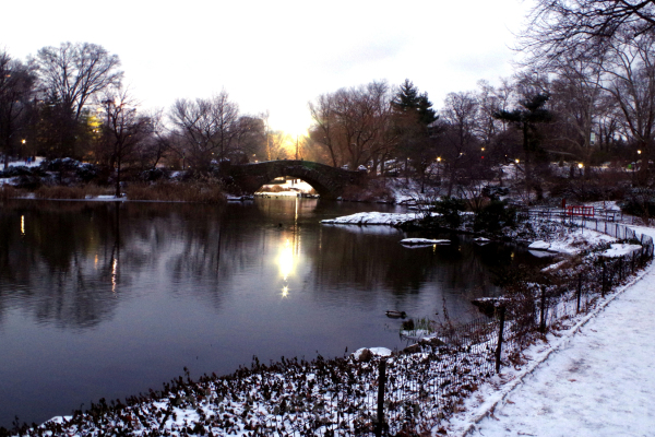 A Snowy Evening
