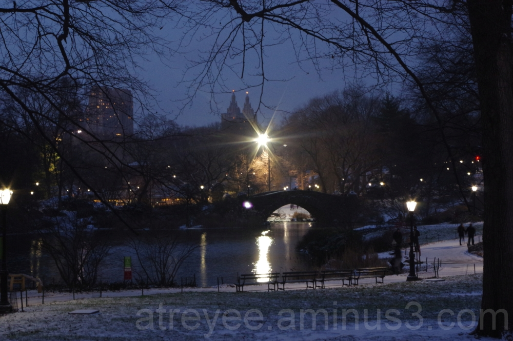 An Evening at Central Park