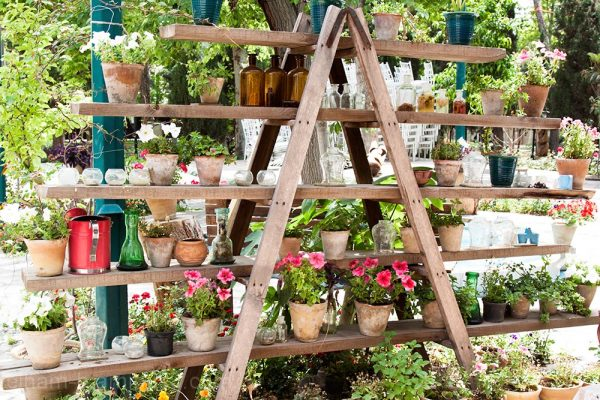 Beautiful flower racks