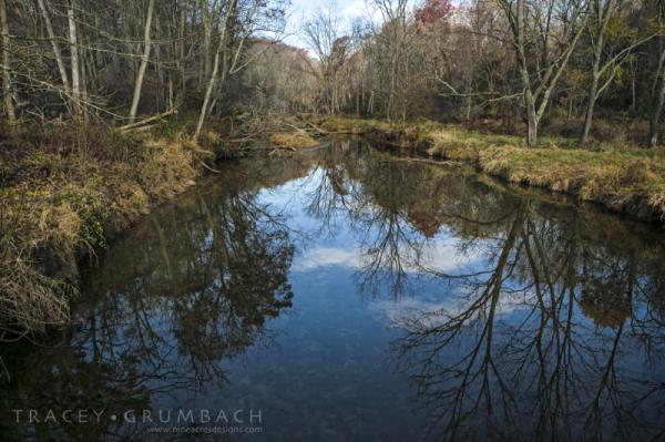 Eden Mill Nature center in autumn