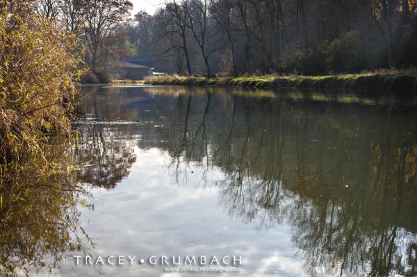 Deer Creek in autumn with Eden Mill