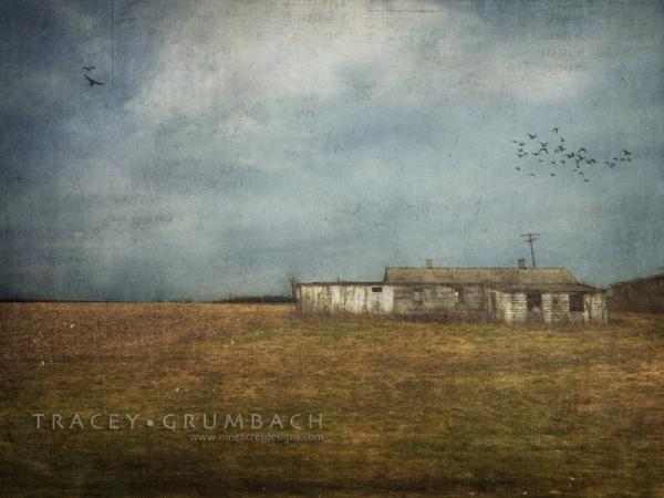 rural landscape of a barn
