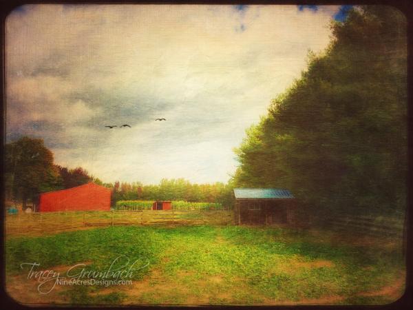 outbuilding of a farm