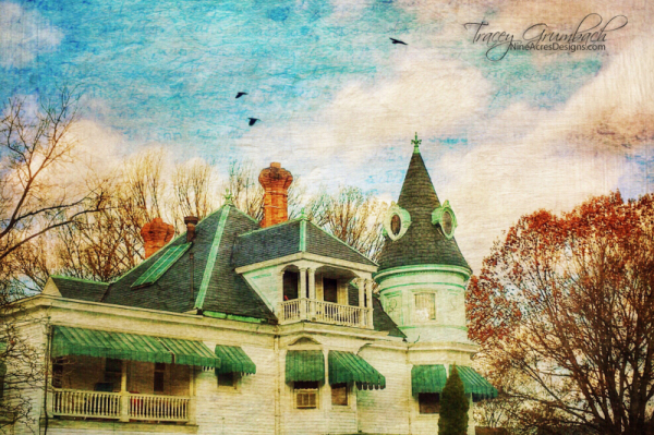 house with birds flying over