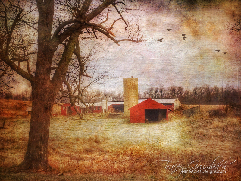 barn in rural landscape