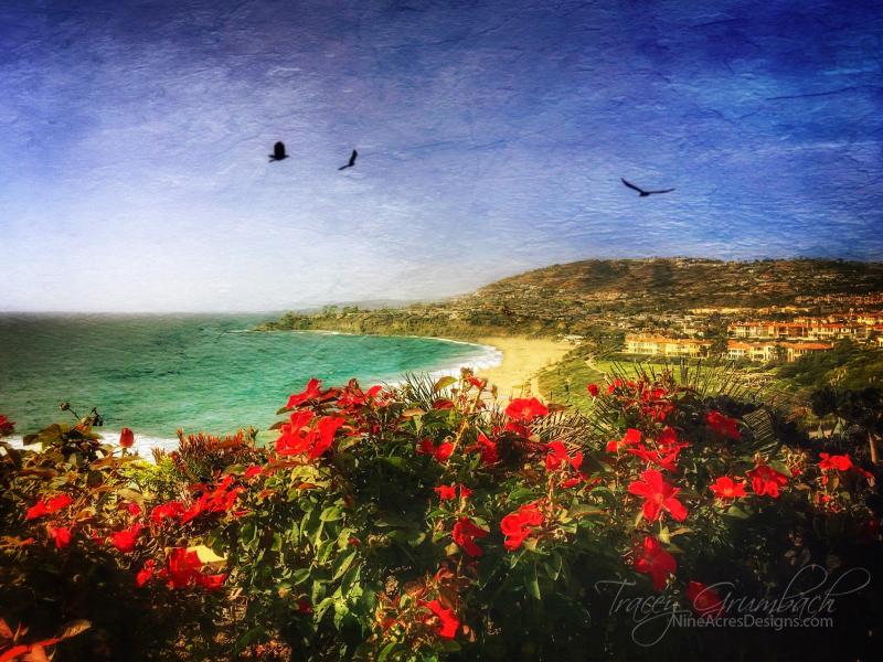 the Pacific Ocean near Dana Point, California