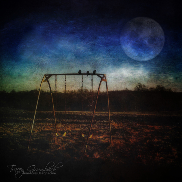 swingset with birds by light of the moon
