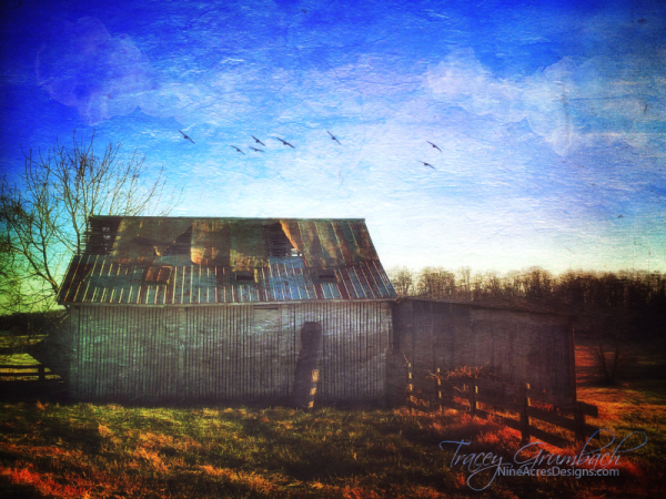 rural barn in disrepair