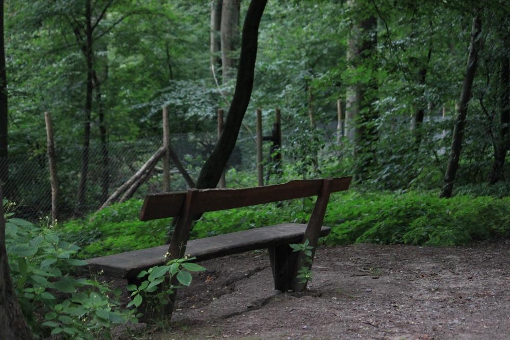 The Solitude!