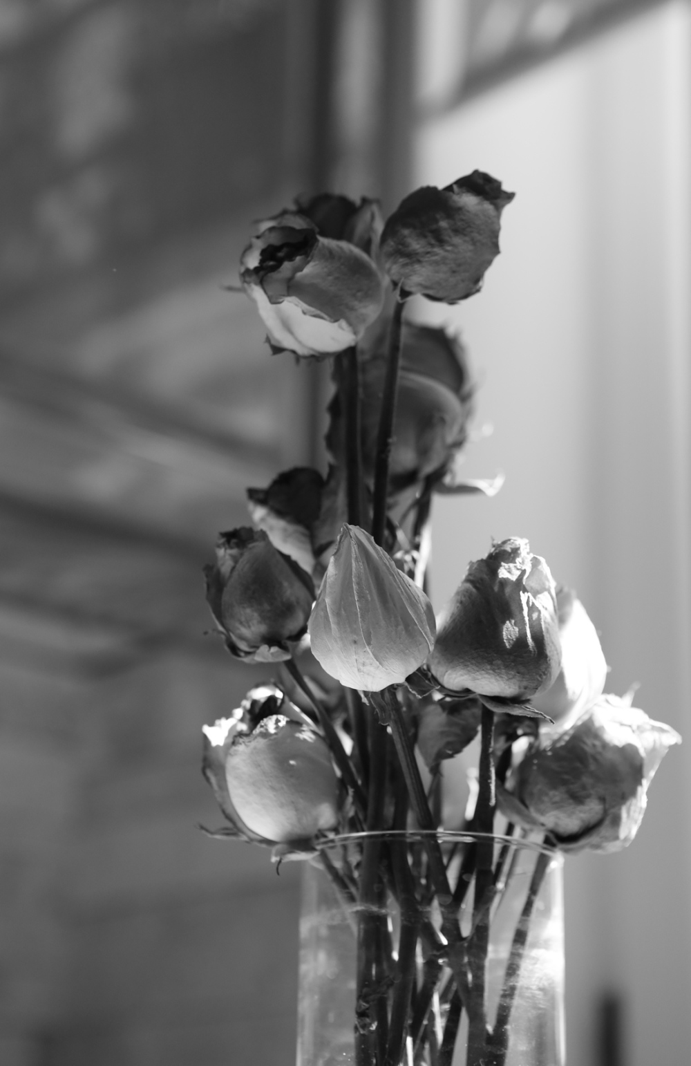 The Lasting flowers!