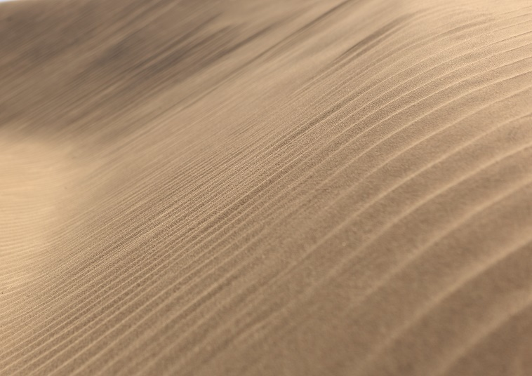 The Waves of Sands