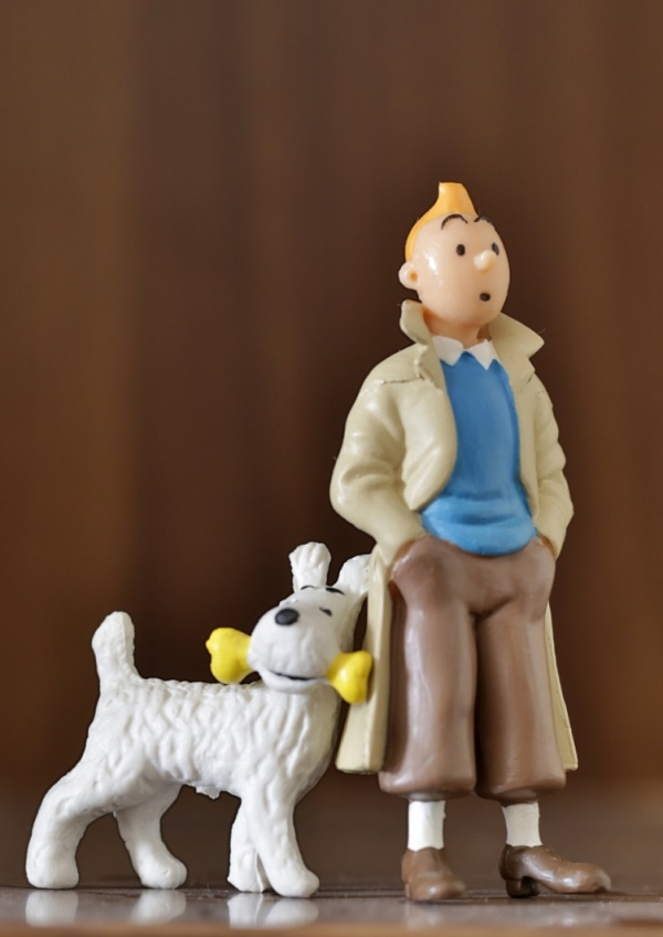 The Childish Nostalgia ! (Tintin & Snowy )