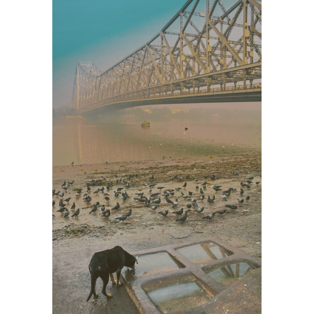 Morning at Howrah Bridge, Kolkata